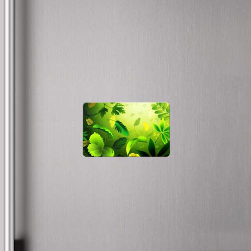 Магнит виниловый Visa  Фото 04, Зелёный мир