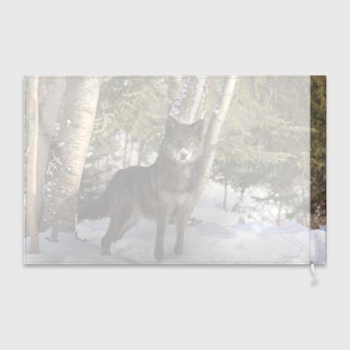 Флаг 3D  Фото 02, Король леса