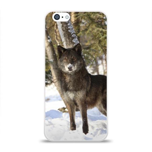 Чехол для Apple iPhone 6 силиконовый глянцевый  Фото 01, Король леса
