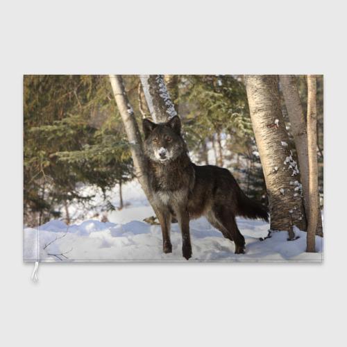 Флаг 3D  Фото 03, Король леса