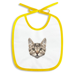 Низкополигональный кот