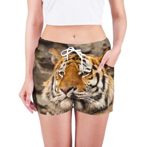 Женские шорты 3D  Фото 03, Тигр
