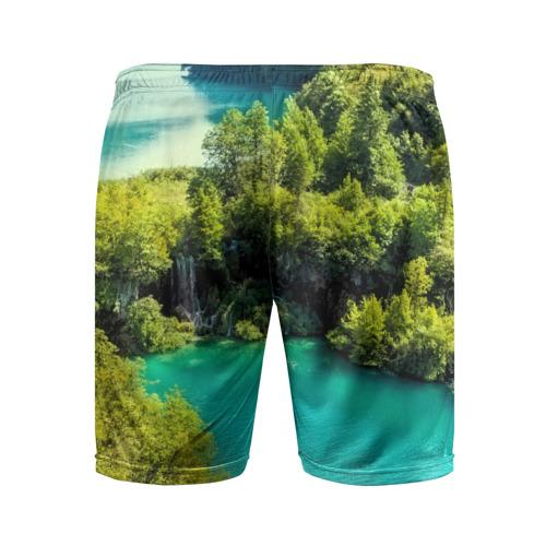 Мужские шорты 3D спортивные  Фото 02, Nature