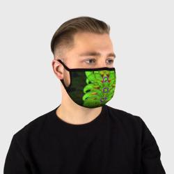 Psy Snake