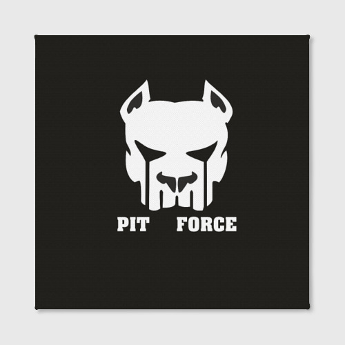 Холст квадратный  Фото 02, Pit Force