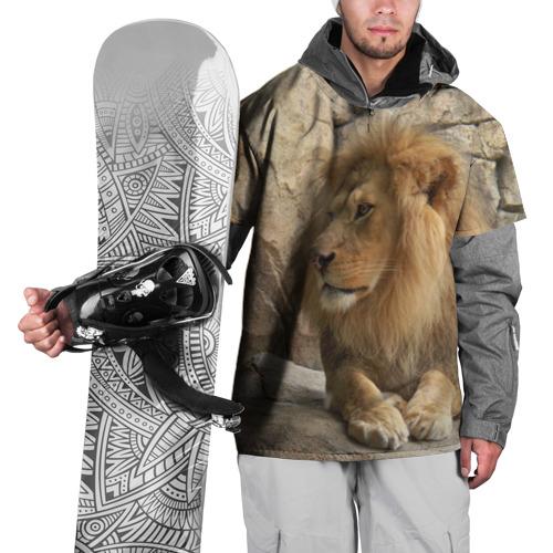 Накидка на куртку 3D Лев