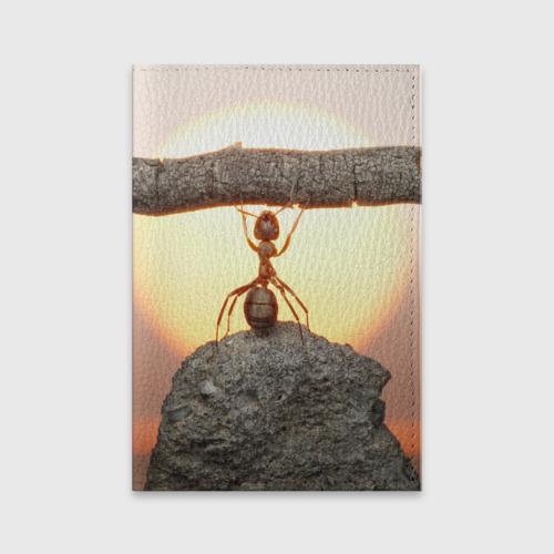 Обложка для паспорта матовая кожа Муравей Фото 01