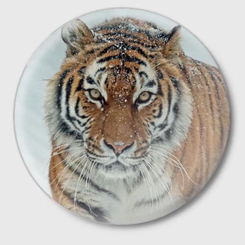 Значок  Фото 01, Тигр