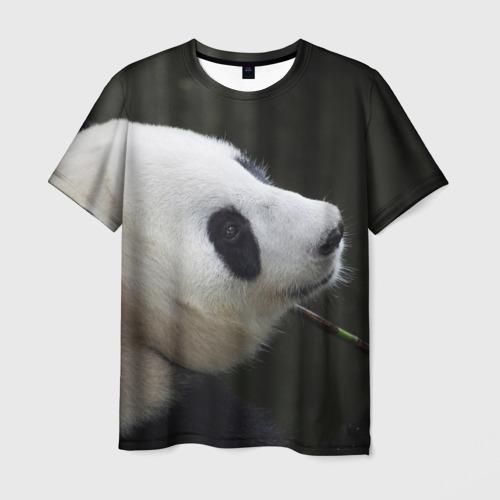 Мужская футболка 3D  Фото 01, Панда
