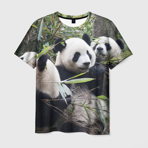 Мужская футболка 3D  Фото 03, Семейка панд