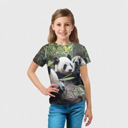Семейка панд