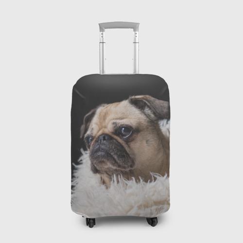 Чехол для чемодана 3D Мопс