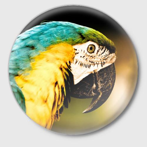 Значок Попугай Фото 01