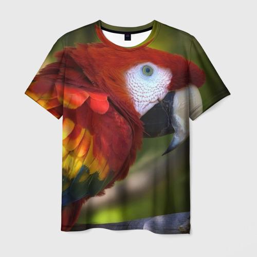 Мужская футболка 3D  Фото 03, Попугайчик