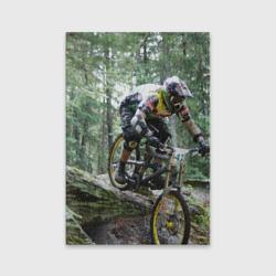 Велоспорт гонка
