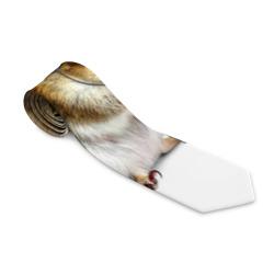 бурундук-меломан
