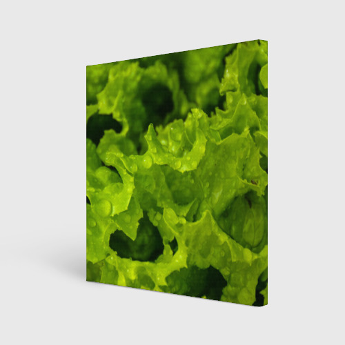 Холст квадратный  Фото 01, Зелень