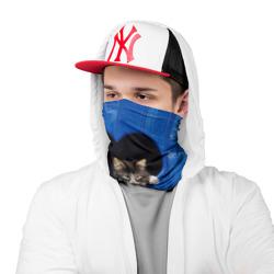 Doctor Cat