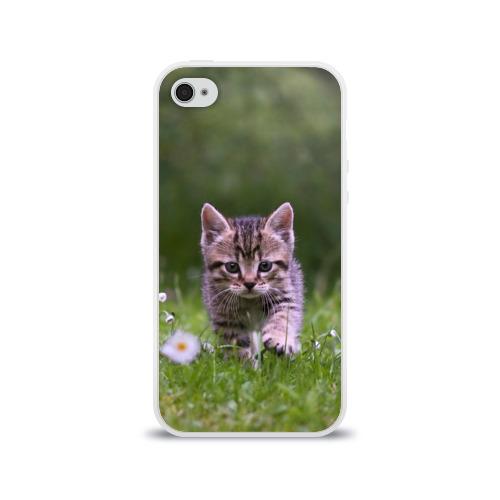 Чехол для Apple iPhone 4/4S силиконовый глянцевый  Фото 01, Котенок на траве
