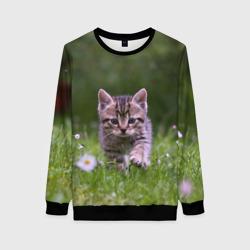 Котенок на траве