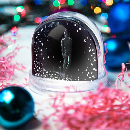 Водяной шар со снегом  Фото 03, Jim