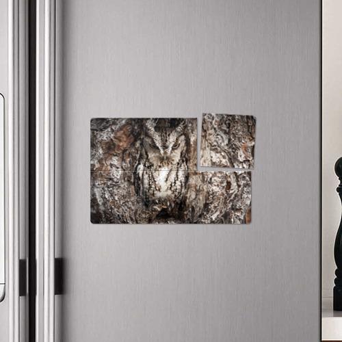 Магнитный плакат 3Х2 Сова Фото 01