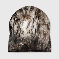 Камуфляж сова