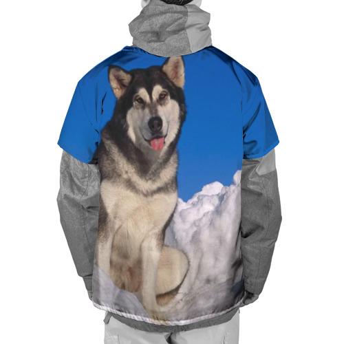 Накидка на куртку 3D  Фото 02, Аляскинский маламут