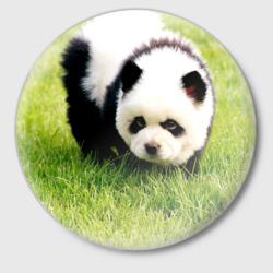 Пес панда