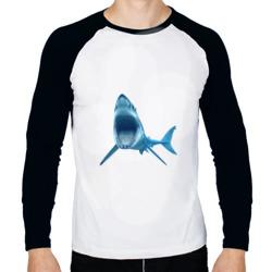 Акула