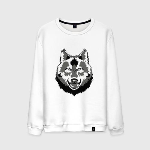 Мужской свитшот хлопок  Фото 01, Серый волк