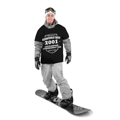 Накидка на куртку 3D  Фото 03, Рождение совершенства 2001