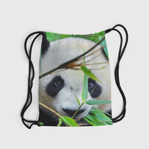 Рюкзак-мешок 3D  Фото 04, Панда в лесу