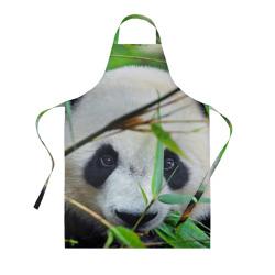Панда в лесу