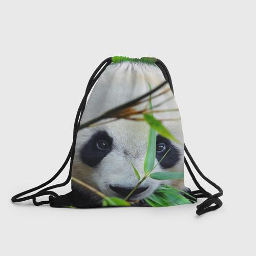 Рюкзак-мешок 3D  Фото 01, Панда в лесу