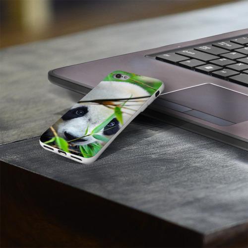 Чехол для Apple iPhone 8 силиконовый глянцевый  Фото 03, Панда в лесу