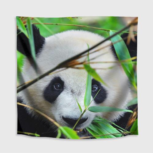 Скатерть 3D  Фото 02, Панда в лесу