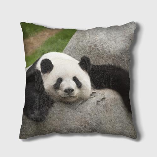 Панда на камушке