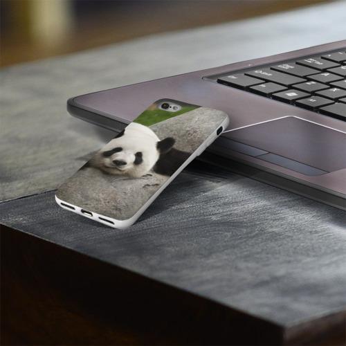 Чехол для Apple iPhone 8 силиконовый глянцевый  Фото 03, Панда на камушке