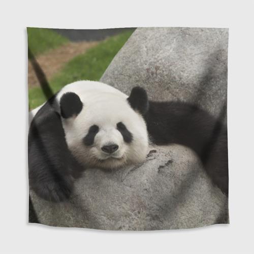 Скатерть 3D  Фото 02, Панда на камушке