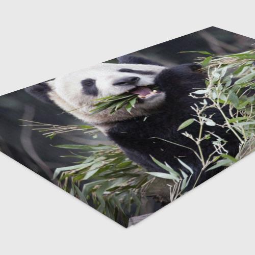 Холст прямоугольный  Фото 04, Панда кушает