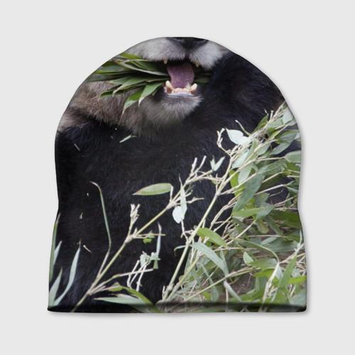Шапка 3D  Фото 01, Панда кушает