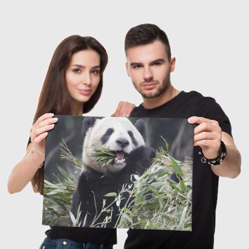 Холст прямоугольный  Фото 05, Панда кушает