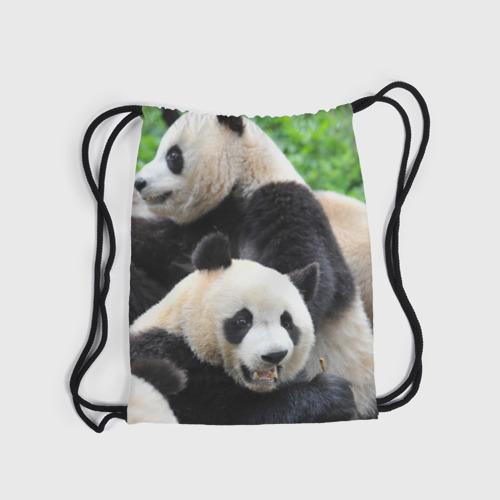 Рюкзак-мешок 3D  Фото 04, Панды
