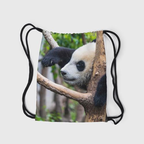 Рюкзак-мешок 3D  Фото 05, Бамбуковый медведь