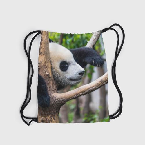 Рюкзак-мешок 3D  Фото 04, Бамбуковый медведь