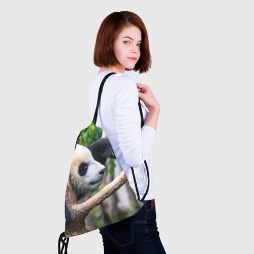 Рюкзак-мешок 3D  Фото 02, Бамбуковый медведь