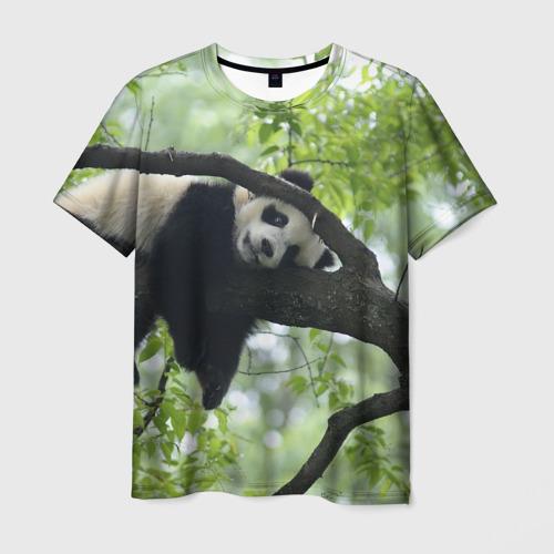 Мужская футболка 3D  Фото 03, Панда спит на ветке