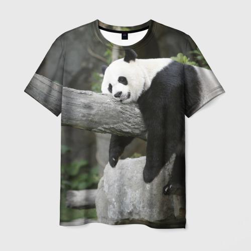 Большая уставшая панда
