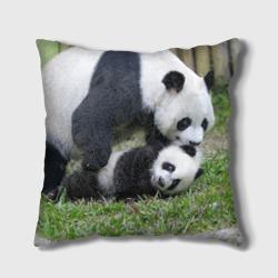 Мамочка и сыночек панды